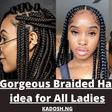 Latest Gorgeous Braided Hairstyles idea for All Ladies