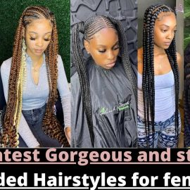 2021 Latest Gorgeous and stunning Braided Hairstyles for females
